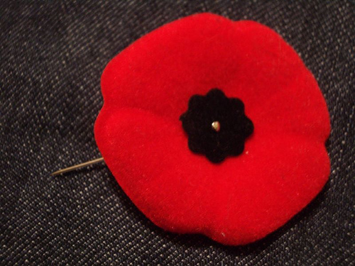 4c3ca-canadian-poppy-pin-via-phyllysfaves-blogspot-com