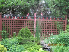 Decorations back yard for Canada Day