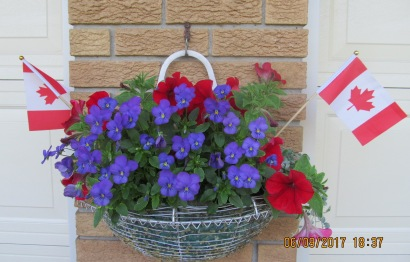 Middle Planter with flags