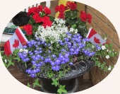 Planter with flags