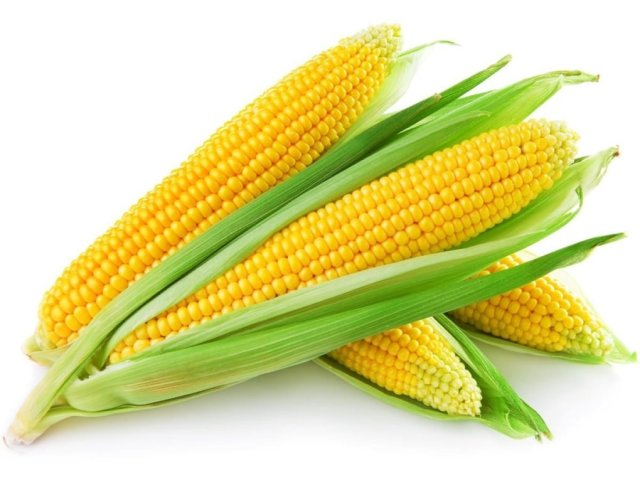 Corn12-1020x765