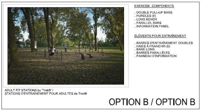 Option B Image